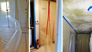 Mold Removal and Containment
