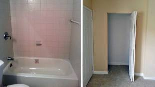 Interior Mold Repair