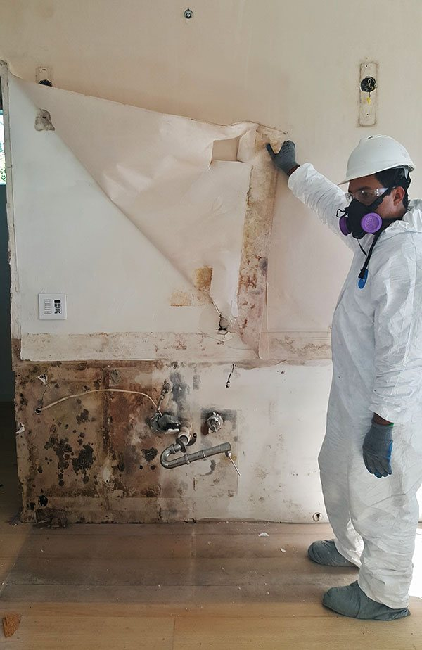 Mold Removal From Home is West Palm Beach